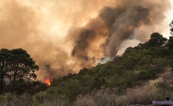 Michoacán va por aumentar penas por incendios forestales