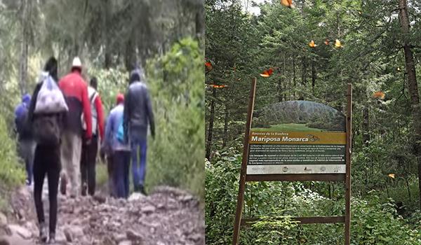 Pago de servicios ambientales hídricos para preservar bosques del Oriente no es suficiente; ejidatarios tienen que hacer frente a talamontes.