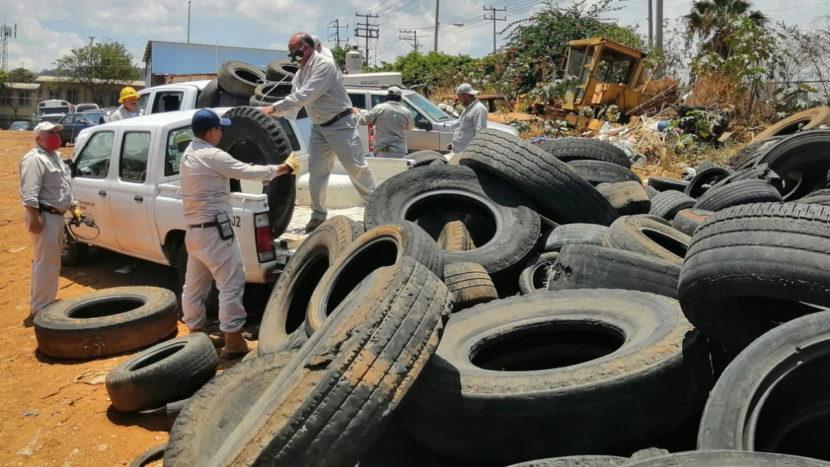 Michoacán, sin defunciones por dengue