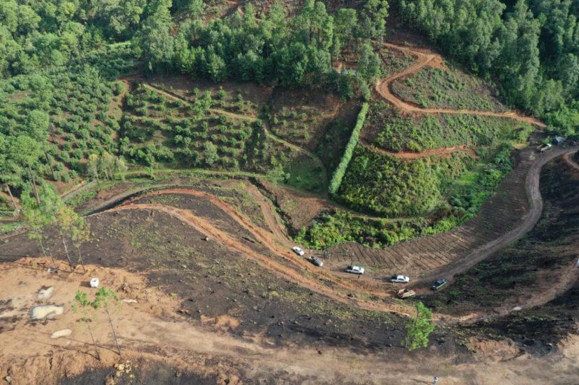 Continuarán los operativos para evitar cambios de uso de suelo ilegales en Michoacán