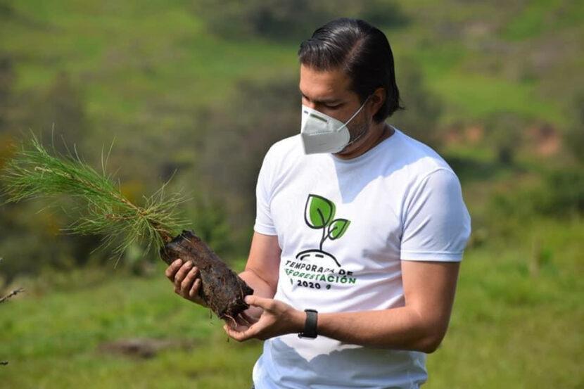 Reforestados 12 millones de árboles en esta temporada