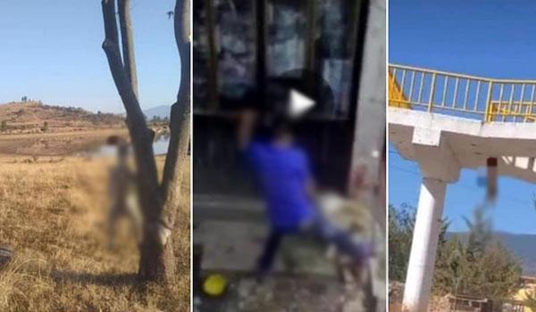 Denuncian en redes sociales actos de crueldad animal en Maravatío