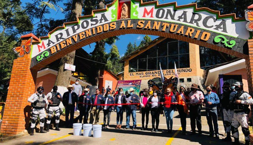 Abren los Santuarios de la Mariposa Monarca con protocolos sanitarios